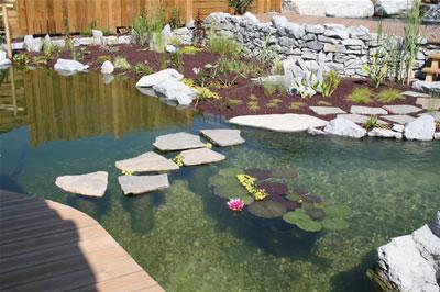 G-Inauguracion-de-una-piscina-natural.jpg