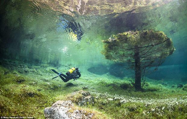 fotografías-de-green-lake-australia-06.jpg