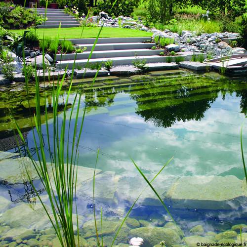 385_piscine-naturelle--retour.jpg