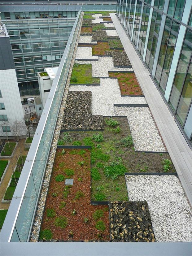 techos-verdes-18.jpg