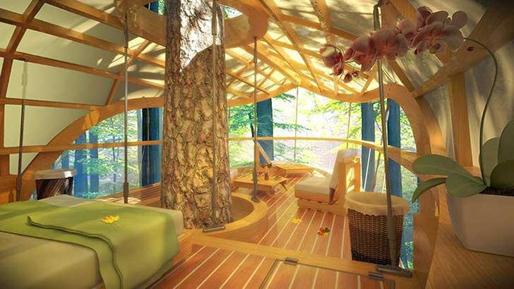 3026130-slide-s-treehouse-04.jpg