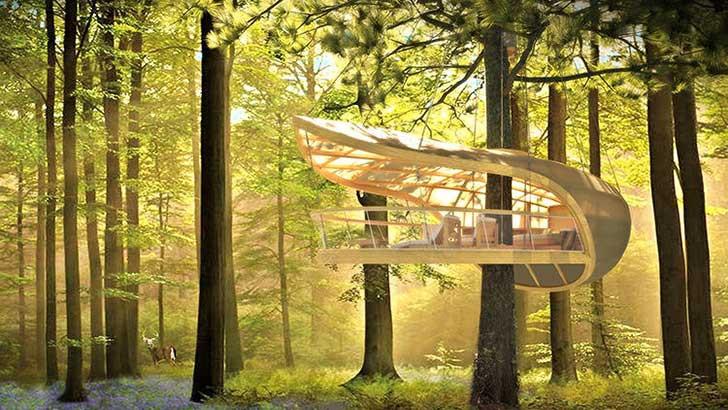 3026130-slide-s-treehouse-02.jpg