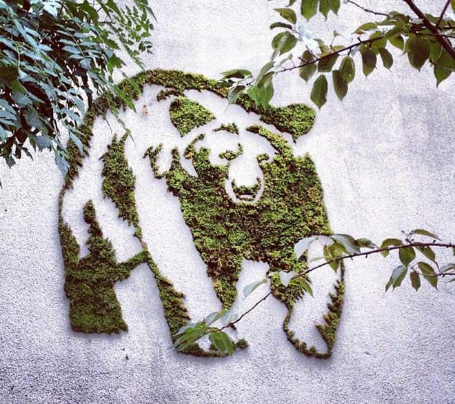 Make-a-moss-graffiti-yourself-Blog-Benetton-2.jpg
