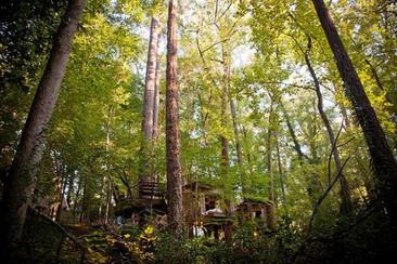 Una casa en el árbol para adultos
