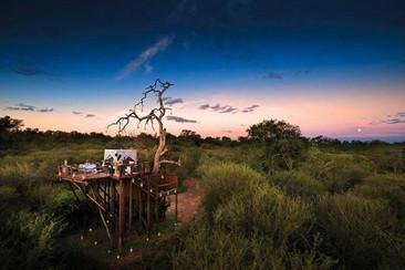 Safari Africano dentro una reserva en Sudáfrica