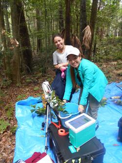 Fieldwork at Royal National Park