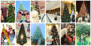 Christmas trees around Australia