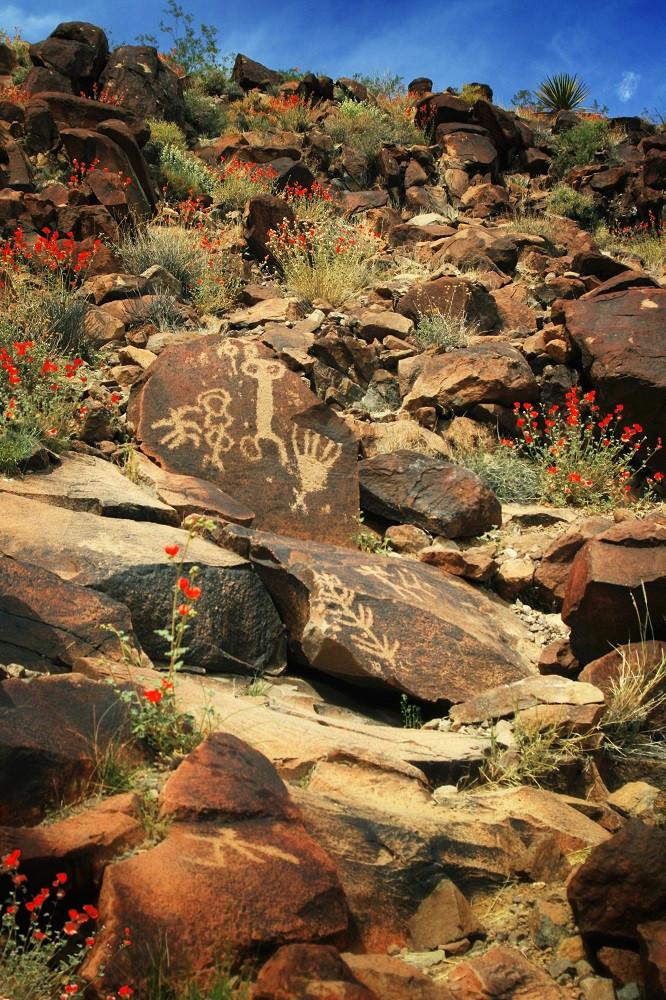carvings in boulders among red desert flowers