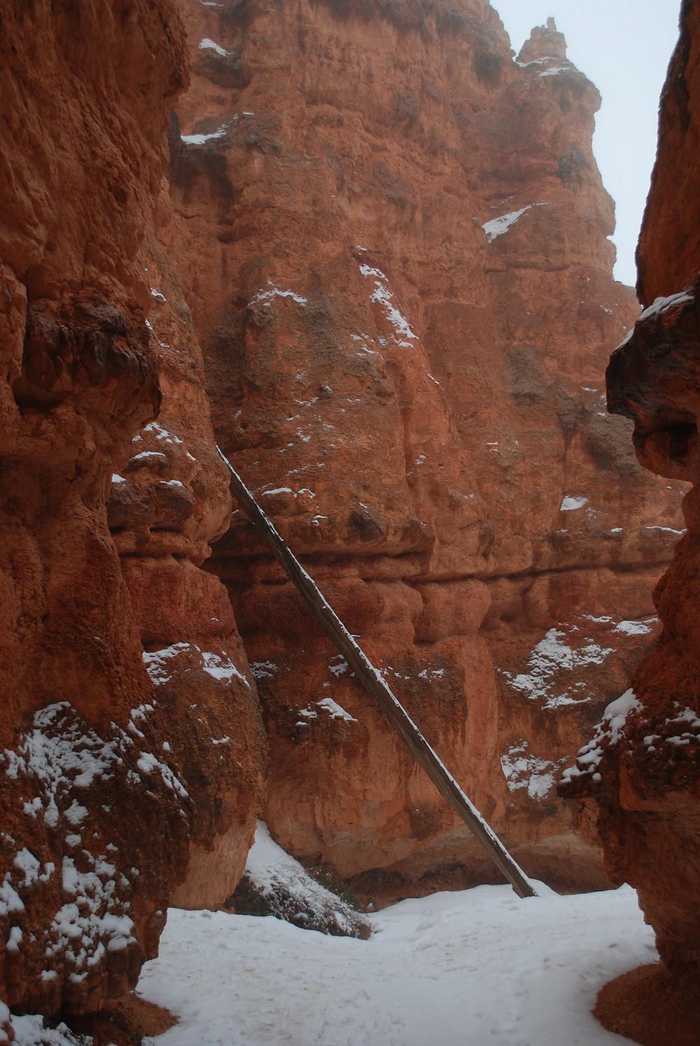snowy trail among tall orange cliffs