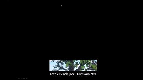 A_minha_foto_com_a_Química_FQ9.mp4