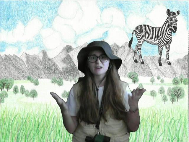 OFA-OFM  Mariana Lopes Safari da Mari -.