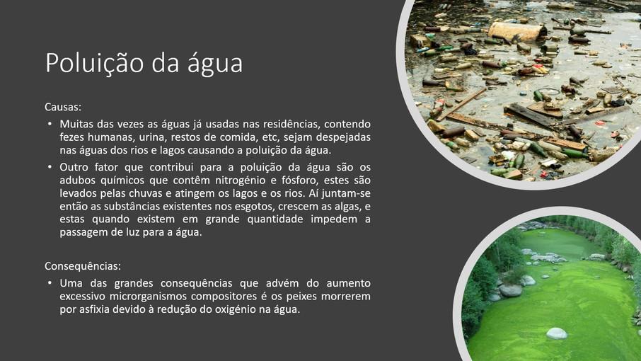 GeogA-10I_Agua_Filipa LaraM_2019-2020