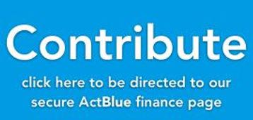actblue-contribute12.jpg