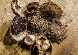 Black Garlic Spices
