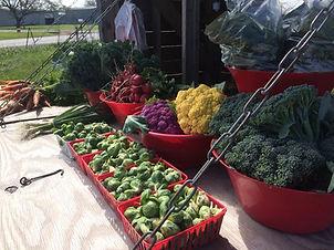 braune_farms_produce1.jfif