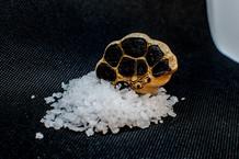 Black Garlic and Salt