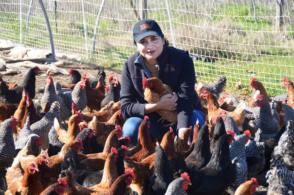 Dayana Schambon introduces daughter Nicole's chickens