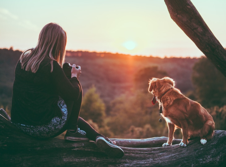 A girl photographer with a camera and a dog in the nature