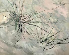 Amagansett Grass