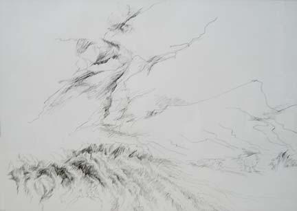 Mt. Cook 3