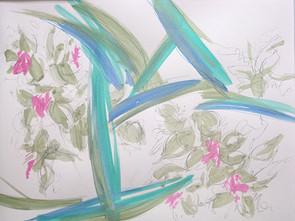 Orchids '17 #10