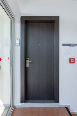 Hotel Door Light With Hidden Hinges, Covered With Wood Grain