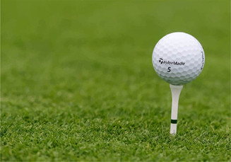 Finishing strong: Boys golf state championships