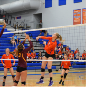 Rubal spikes volleyball against opposing team.