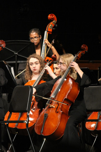 Orchestra hits the right note at winter concert