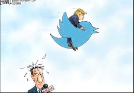 One bird's political revolution