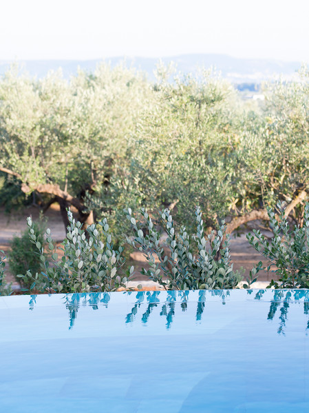 the olive rertreat
