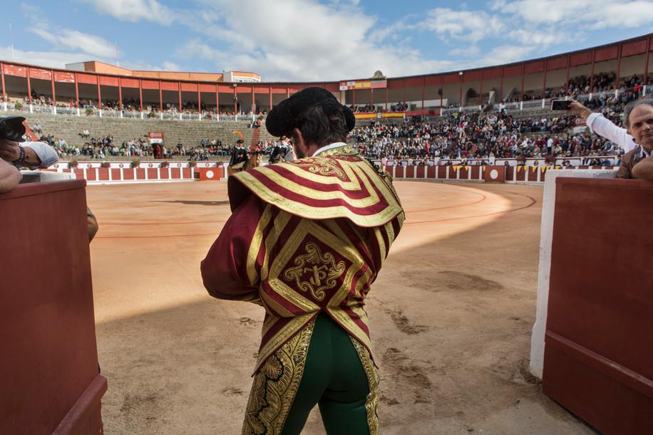 Padilla_Bullfighter_32.jpg