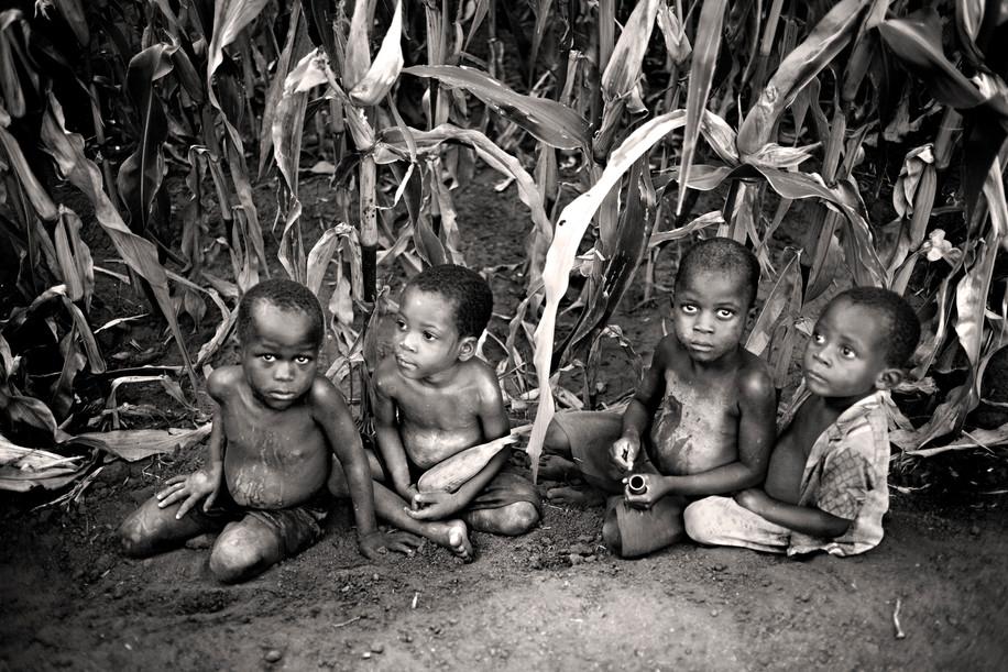 Niños en el maizal