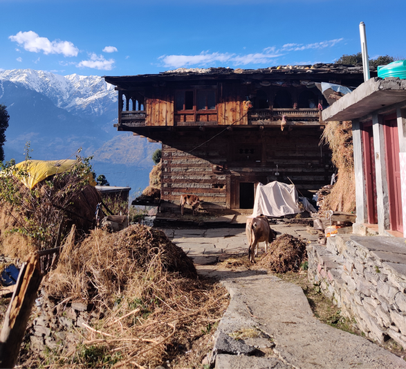 The story of kath kuni: Preserving vernacular architecture in the Himalaya