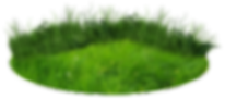 grass_patch_of_land_23.png