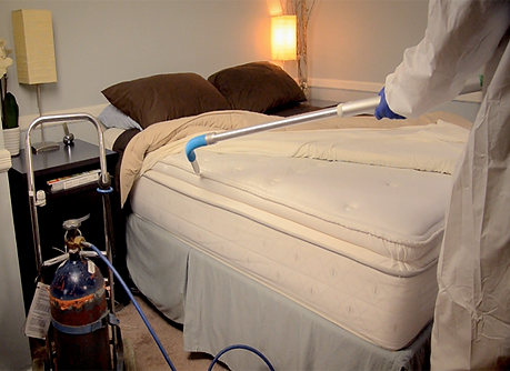 Bed Bug Treatment Columbia MD