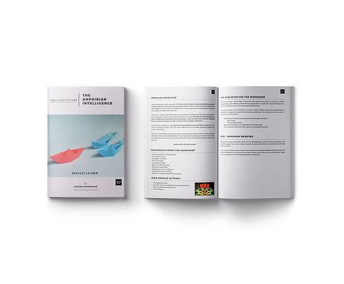catalyst_cube_brochure_design1