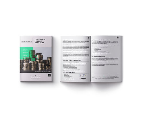 catalyst_cube_brochure_design4