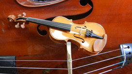 Austin Strings Launches New Website