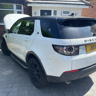 DISCOVERY SPORT CARBON CLEANED