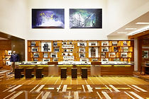 Louis Vuitton on 150 Bloor Street West, Toronto
