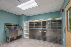 Noah's Westside Animal Hospital-56