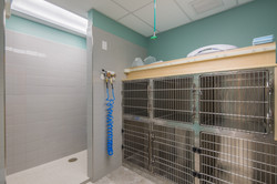 Noah's Westside Animal Hospital-52