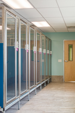 Noah's Westside Animal Hospital-55