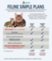 Feline Simple Plan