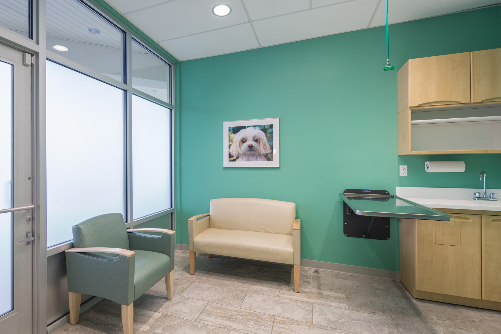 Noah's Westside Animal Hospital-14