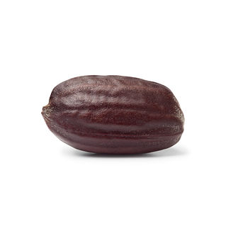 jojoba-seed.jpg