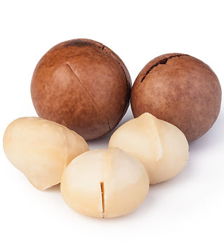 macadamia-nuts-PE96NGH.jpg
