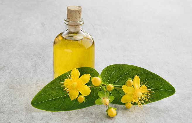 st-johns-wort-flower-and-oil-8YHXAT4_edi