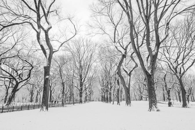Liever sneeuw dan regen...